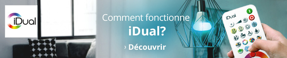 infographie iDual