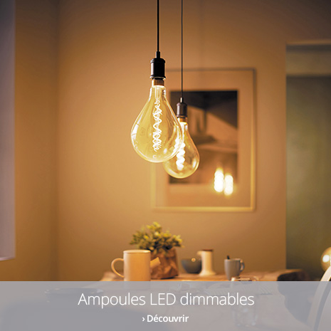 Ampoules LED dimmables