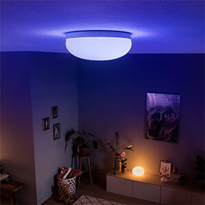 Philips Hue Flourish LED