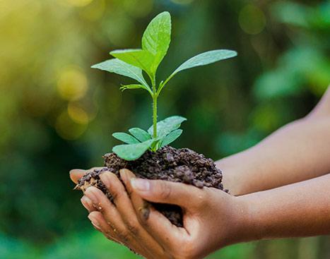 Une responsabilité sociétale et environnementale